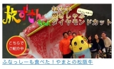 モニター86♡夏バテ前にうまうま松坂牛をGETせよ!の画像(2枚目)
