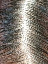 フラーレンが頭皮を健やか!髪にコシ・ツヤ・うるおいを♪ 【BEAUTY PRIDE】の画像(14枚目)