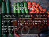 """テレビで話題の""""ココナッツオイル""""のランキング1位を使用してのダイエット!の画像(3枚目)"""