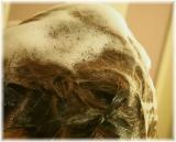 口コミ記事「極上の手触り!森下悠里サンも愛用!BEAUTYMALLのWフラーレンのヘアケア②」の画像