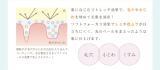モニター募集~プリモディーネ~の画像(3枚目)