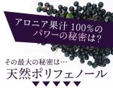 有機アロニア100%果汁の画像(2枚目)