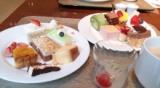 食べた後でOKって半信半疑の画像(1枚目)
