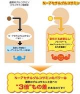 8/1 Nアセチル グルコサミンの画像(4枚目)
