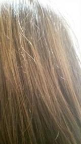 大島椿で髪も肌もツヤツヤ♪の画像(5枚目)