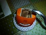 モンカフェ 有機栽培コーヒー の画像(3枚目)