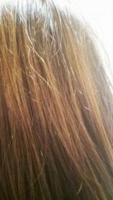 大島椿で髪も肌もツヤツヤ♪の画像(6枚目)