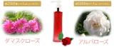 生製法のオールインワン美容液の画像(3枚目)