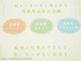 【日本盛】 プモア ミルキーローションの画像(3枚目)