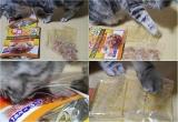 モニター◇愛猫ちゃんのお気に入りスープの画像(3枚目)