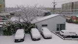 雪だ❗の画像(1枚目)
