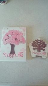良いお年を…♪35幸せをよぶマジック桜の画像(1枚目)