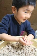 餅つき機で味噌作りの画像(5枚目)