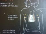 「これ、便利!!肩こりの救世主『ケナップ』ツボを心地良く刺激中」の巻の画像(1枚目)