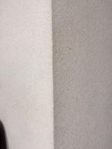 ウルトラハードクリーナー 多用途の画像(5枚目)