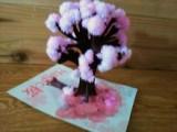 Magic 桜の画像(5枚目)