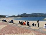 ドルフィンファームしまなみ(・∀・)伯方島でイルカちゃんを見る(愛媛県今治市)の画像(1枚目)