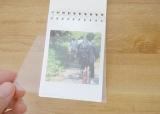 MYBOOK LIFEのオシャレフォトブック【LIFEring】の画像(4枚目)
