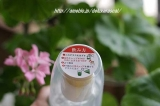 新製品☆遥香 抹茶 オーガニックの画像(3枚目)
