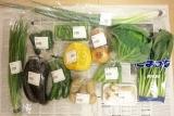 西日本(九州・熊本)産お野菜セットをお得にお取り寄せできます!!の画像(5枚目)