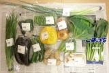 西日本(九州・熊本)産お野菜セットをお得にお取り寄せできます!!の画像(1枚目)