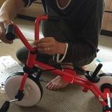 ついに三輪車デビュー・ラビットトライクの画像(5枚目)