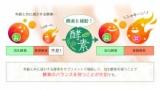 オーガランドオリジナルサプリ★やさい酵素の画像(9枚目)