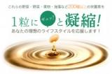 オーガランドオリジナルサプリ★やさい酵素の画像(12枚目)