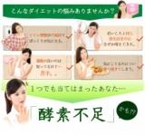 オーガランドオリジナルサプリ★やさい酵素の画像(2枚目)