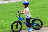 アイデスD-Bike Masterがカッコイイ!キックバイクにもなるオススメのキッズ自転車!の画像(4枚目)