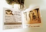 トニーに似た京都国立博物館のキャラ「トラりん」 の画像(3枚目)