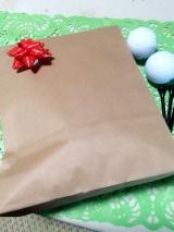 「キャタピーゴルフ+風ナビEangelセット」の画像(8枚目)
