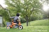 こどもの成長を感じられる 三輪車 -アイデスカンガルー-の画像(1枚目)