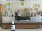 ペットのニオイでお困りの方~天然酵素由来 強力防臭・消臭スプレーの画像(3枚目)