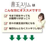 【モニター55】株式会社グリム「善玉スリム」の画像(2枚目)