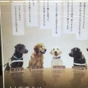 「とりあえず」<3名限定>ザ・リッツ・カールトン東京のアフタヌーンティーで座談会「アッカノン」の投稿画像