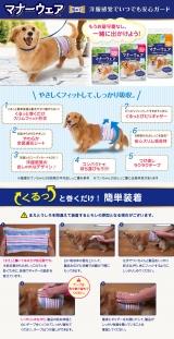 ☆商品紹介☆ ワンちゃん用おむつの画像(1枚目)