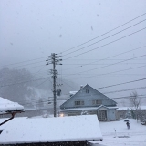 雪が降りました。の画像(1枚目)