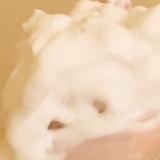 「   リメイ バウンシィホイップ 」の画像(4枚目)