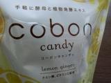 「   ☆ 酵母としょうがでインナー美人!「コーボンキャンディ(レモン&ジンジャー)」 ☆ 」の画像(2枚目)
