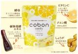 「手軽に酵母!コーボンキャンディ(レモン&ジンジャー)♪」の画像(15枚目)