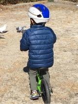「キッズヘルメットS新幹線E7系かがやき」の画像(16枚目)