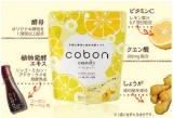 「コーボンの『コーボンキャンディ(レモン&ジンジャー)』が2017年1月に新登場~☆」の画像(13枚目)