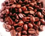 「   エクーアのシベットコーヒー(コピルアク)で最高に贅沢なひと時を 」の画像(7枚目)