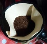 「   エクーアのシベットコーヒー(コピルアク)で最高に贅沢なひと時を 」の画像(8枚目)