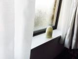 「寝室の防カビとニオイ対策に#エスシィバイオ」の画像(1枚目)