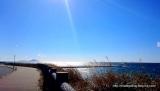 「椿まつりの伊豆大島に行ってきました!【大島椿×島ガールコラボ伊豆大島の旅】」の画像(2枚目)