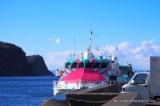 「椿まつりの伊豆大島に行ってきました!【大島椿×島ガールコラボ伊豆大島の旅】」の画像(10枚目)