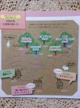 「マルチに使える!椿の種子から採った100%の椿油 「大島椿」」の画像(4枚目)