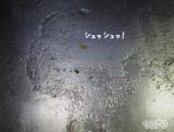 「☆ 株式会社ケミコートさん 安全 & 強力な油汚れ用洗剤  汚れをこんなに綺麗に!落とします。」の画像(4枚目)